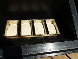Overnight White Sourdough Bread in the SOS Sport solar oven