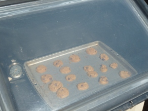 Chocolate chip cookies baking in the SOS Sport solar oven