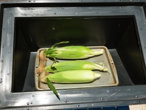 Solar cooking ears of corn