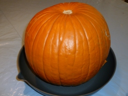 solar cook a pumpkin